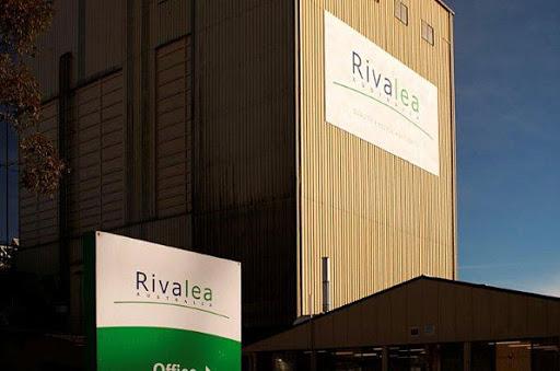 Rivalea Case Study