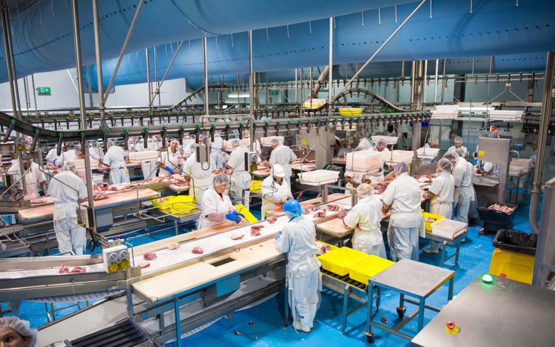 Gundagai Meat Processors – Case Study