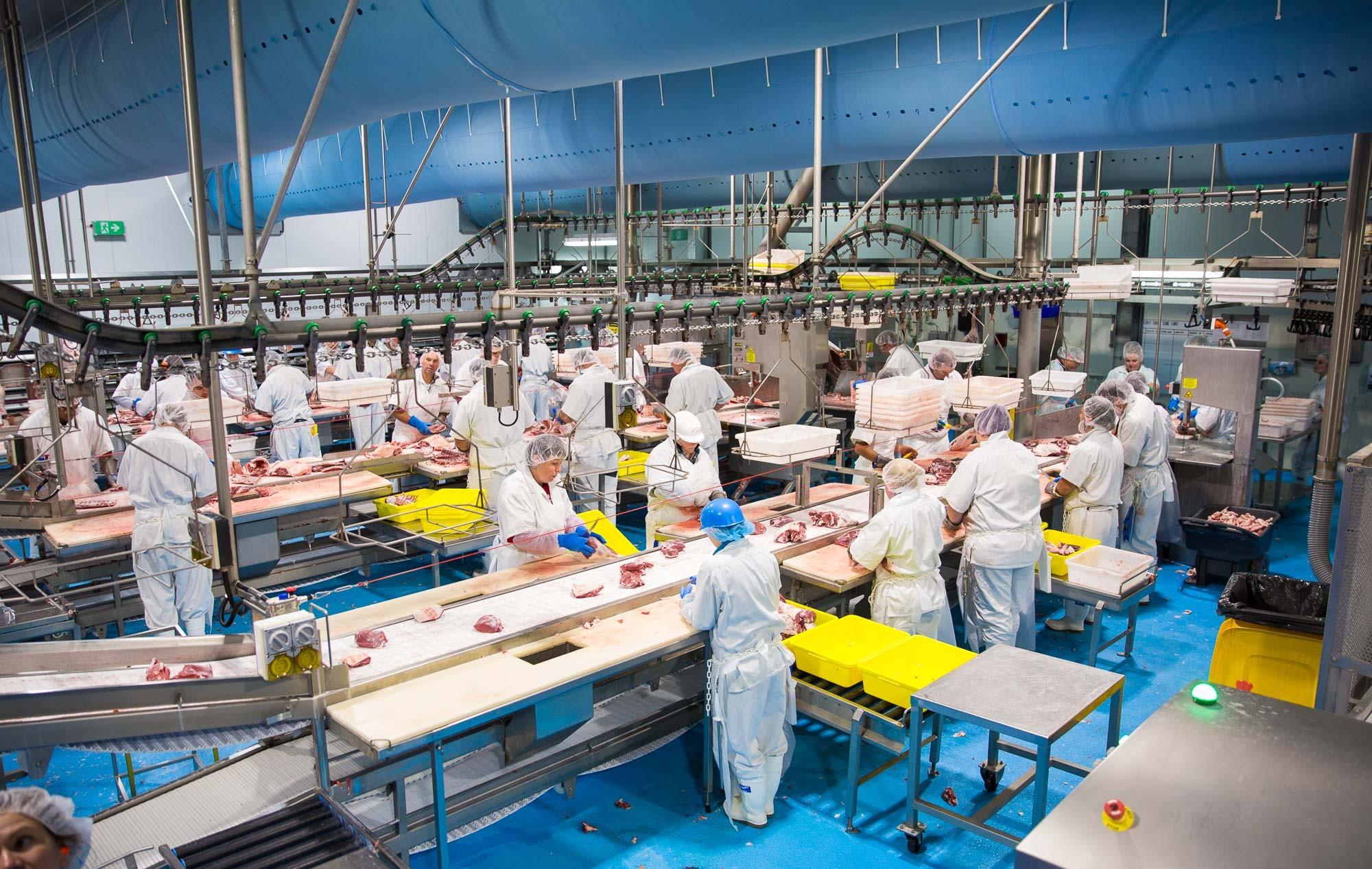 Gundagai Meat Processors Case Study